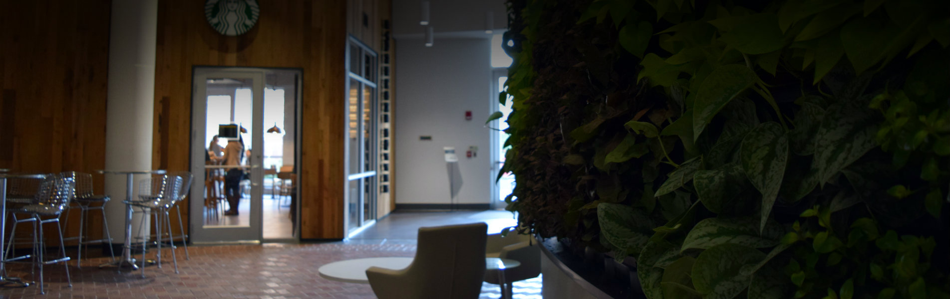 Living wall in TCC Center for Innovation lobby